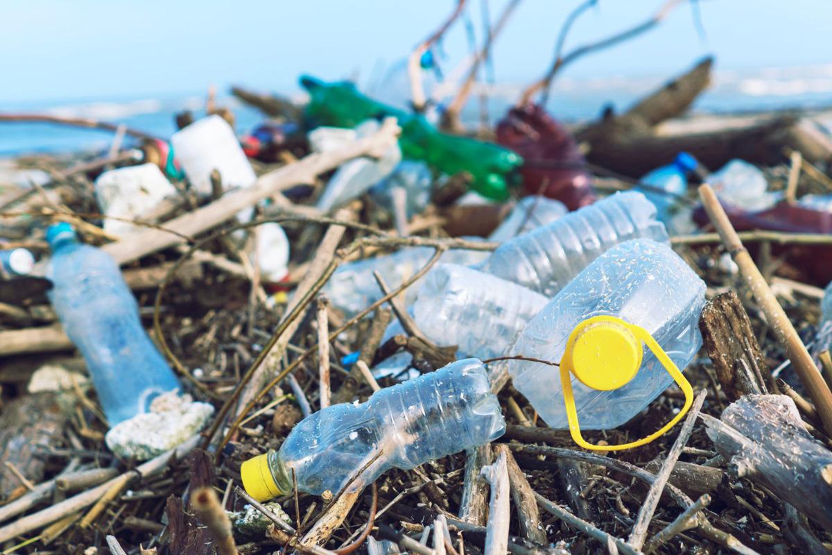 Tiêu chuẩn và vấn đề rác thải nhựa: Vật liệu nào thay thế cho nhựa?